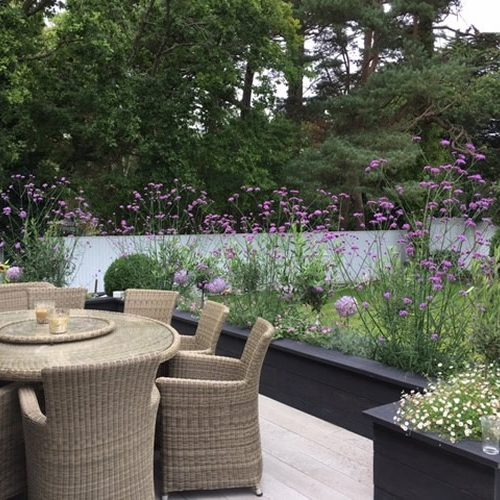 Romantic Summery Planting In The Raised Beds Around Seating Area