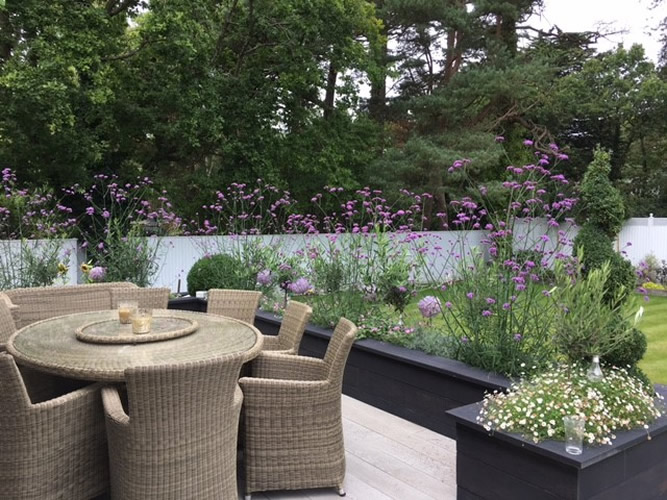 Contemporary Gardens Dorset Bournemouth Garden Designers
